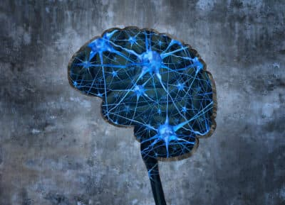 Neurons in brain to show mental health disorders signs
