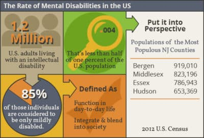 rate of intellectual disability