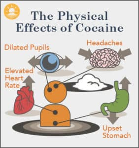 Infographic of the physical effects of cocaine