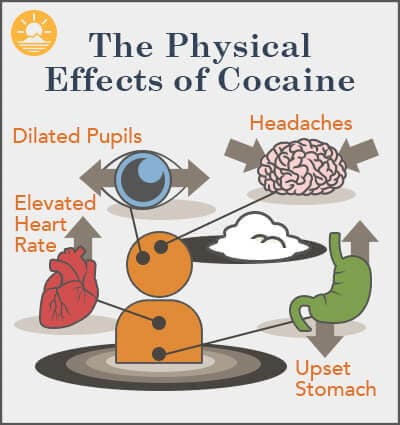 infographic of physical effects from cocaine